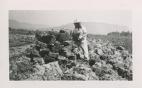 Stacking Peat at the Alouette Peat Farm c.1940s