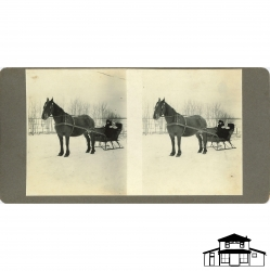 Stereoscopic Card