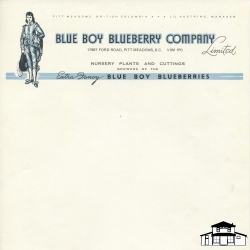 Blue Boy Blueberry Company Stationary