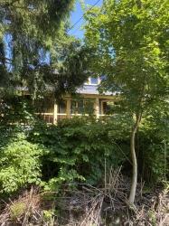 Alvo Von Alvensleben House hidden amongst the bushes and trees.